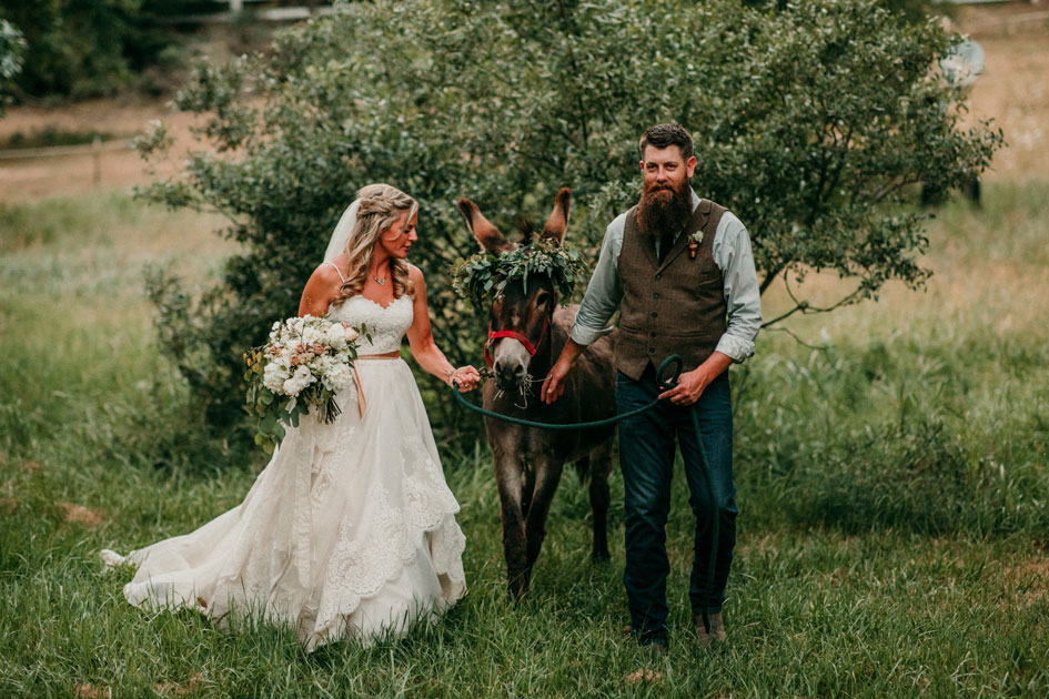 Bride and groom with a donkey bedecked in a floral wreath