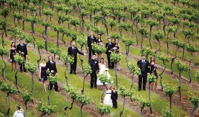 Sunshine Limo Service Western Oregon With A Variety Of Limos To Choose From Offers Winery Tours For Choosing The Venue As Well