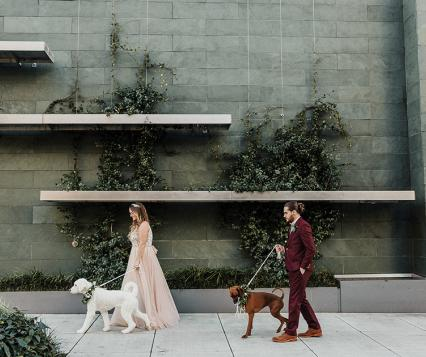 dog-friendly wedding ceremony